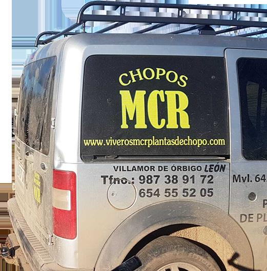 mcr chopos
